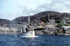 Napassoq - Atammik - Greenland - 1976 - Foto: Ole Holbech