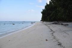 Govind Nagar Beach – Havelock Island – Andaman Islands – India – 2018 - Foto: Ole Holbech