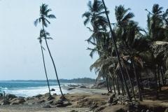 Kovalam - Kerala - India - 1983 - Foto: Ole Holbech
