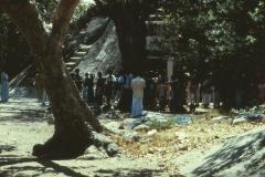 Okanda - Kumana – Sri Lanka – 1983 - Foto: Ole Holbech