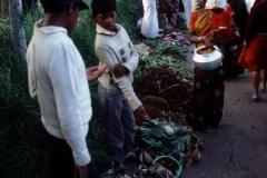 Nuwara Eliya - Sri Lanka - 1987 - Foto: Ole Holbech